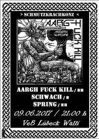 SchmutzKrachKonz im VeB Lübeck am 9.6.17